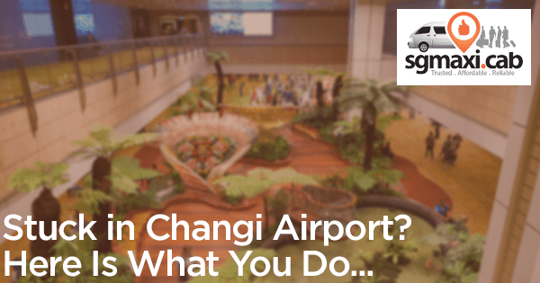 stuck-in-changi-airport-call-sgmaxi