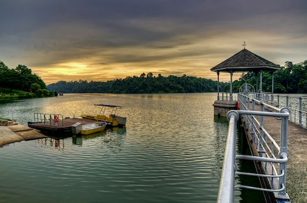 sgmaxi-places-to-find-peace-in-singapore-Macritchie