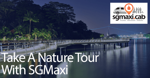 take-a-nature-tour-with-sgmaxi-in-maxicab