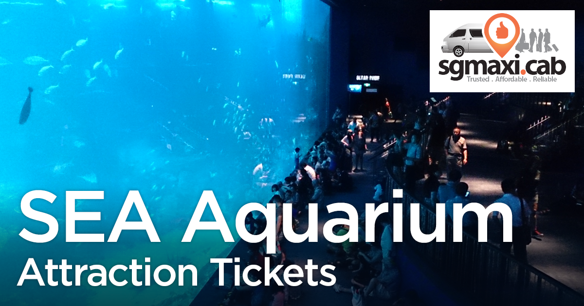 sea-aquarium-attraction-tickets